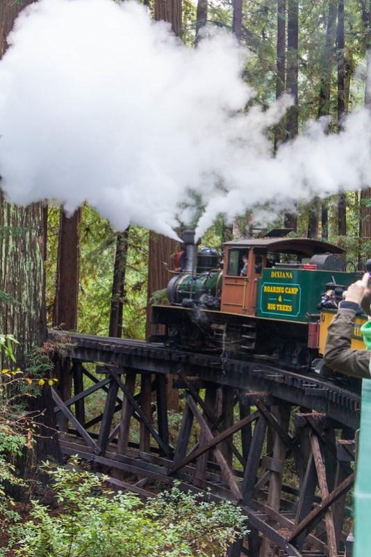 12.05. Roaring Camp Railroad and train ride