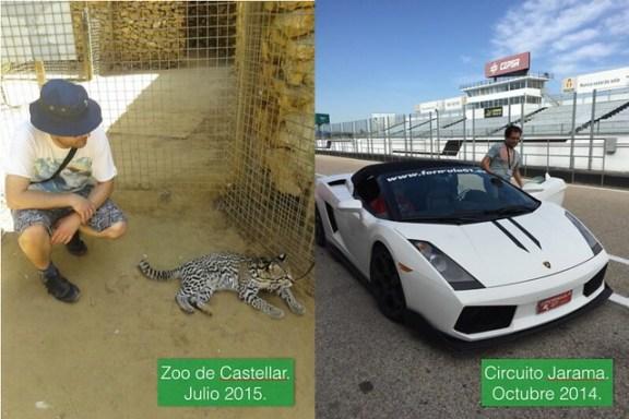 Guepardo vs. Lamborghini