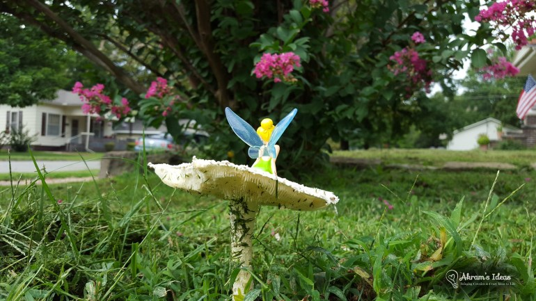 Mushroom Fairy 009
