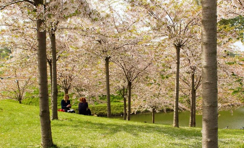 Langelinje Park