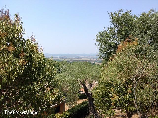 oasi-maremma-village