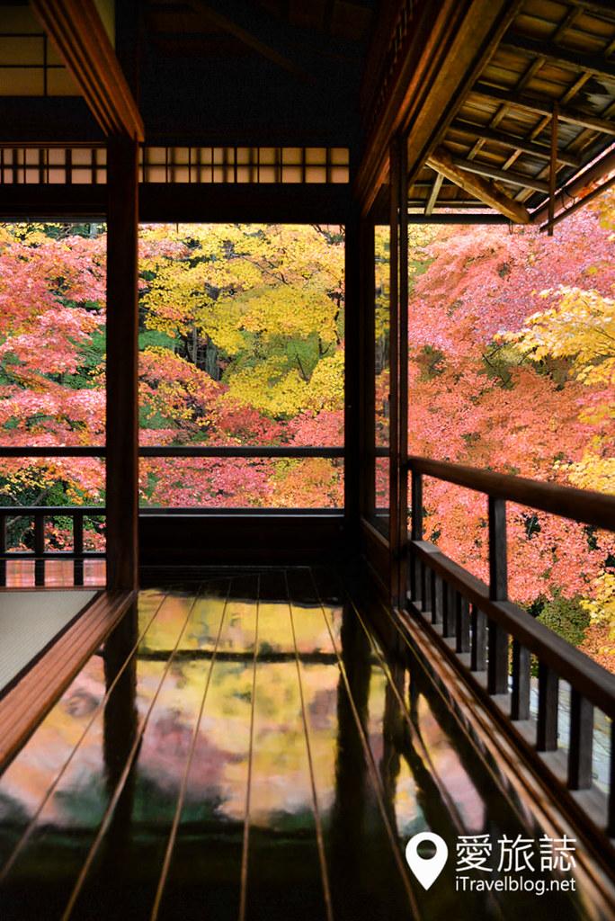 京都赏枫景点 琉璃光院 22