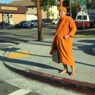 Barefoot & Fancy-Free (in a saffron robe) #buddistmonk #asseeninglendale