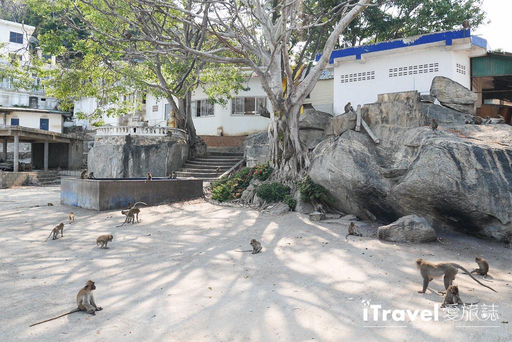 华欣景点推荐 考佬寺Wat Khao Takiap (34)
