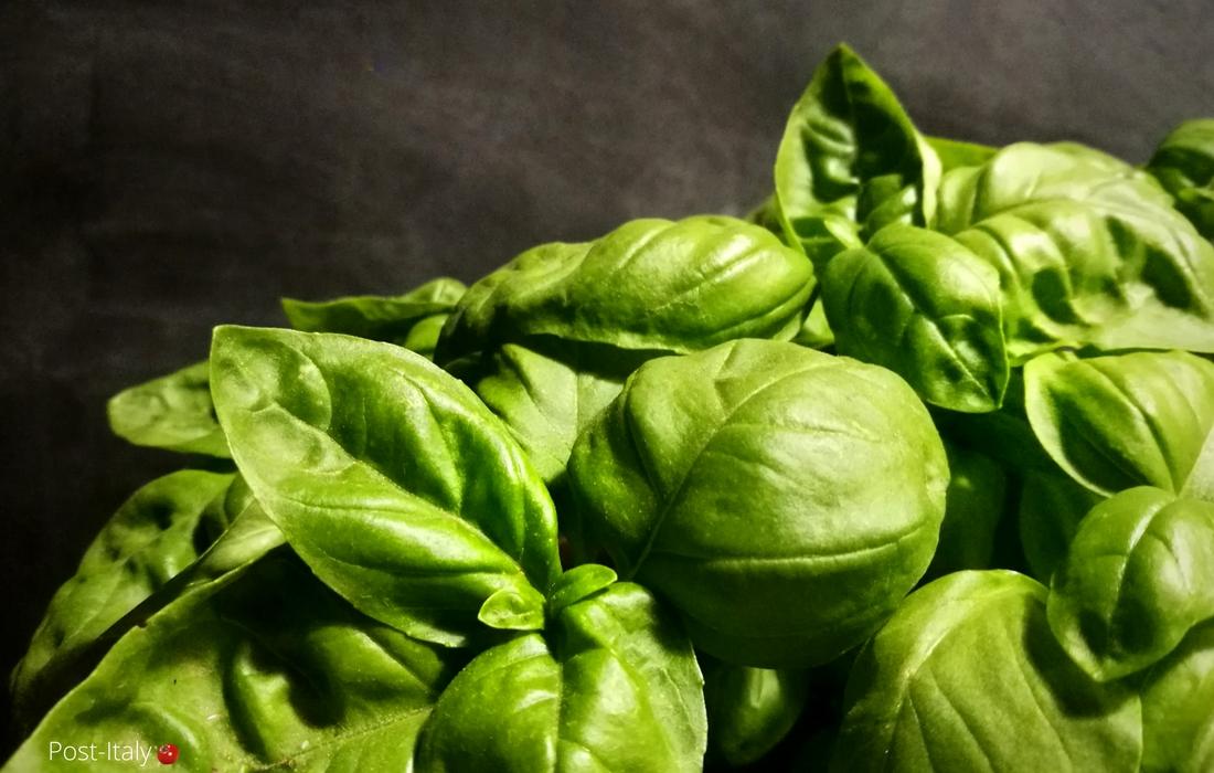 Hortaliças em receitas italianas