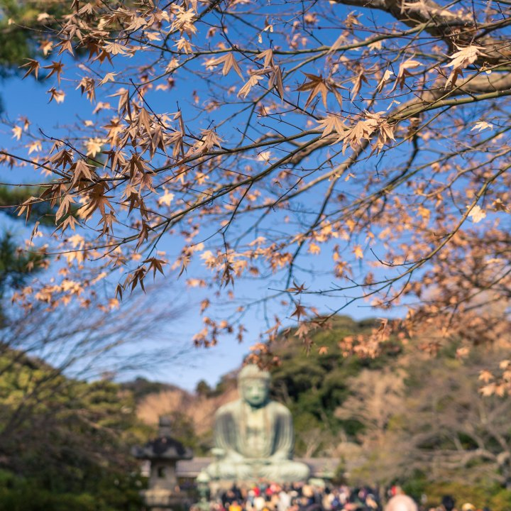 Kōtoku-in - Great Buddha of Kamakura