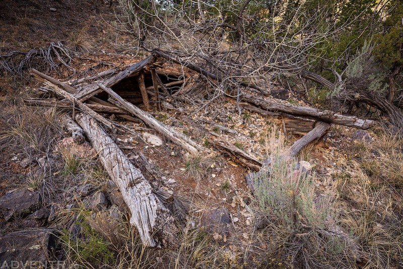 Dugout Cabin