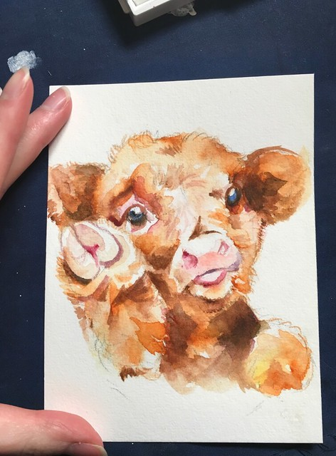 Tell Me Tuesday: Cow Request