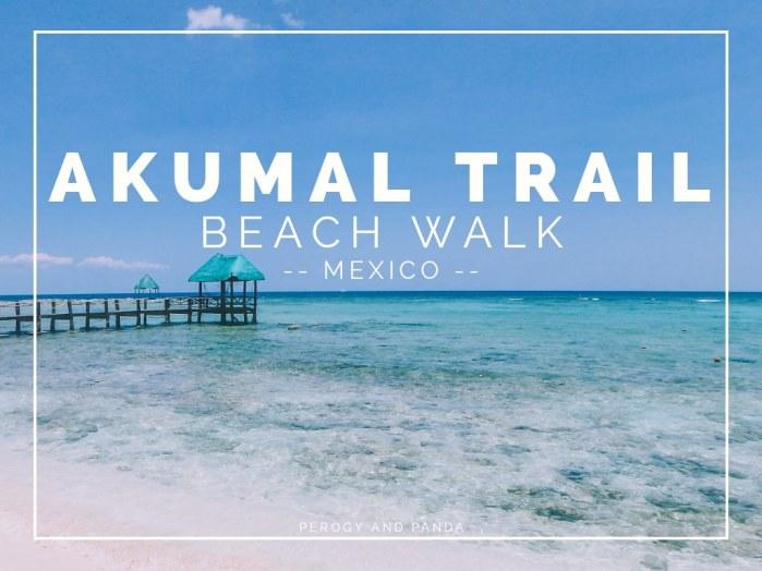 Akumal Trail Beach Walk                   (Akumal Quintana Roo Riviera Maya Mexico)