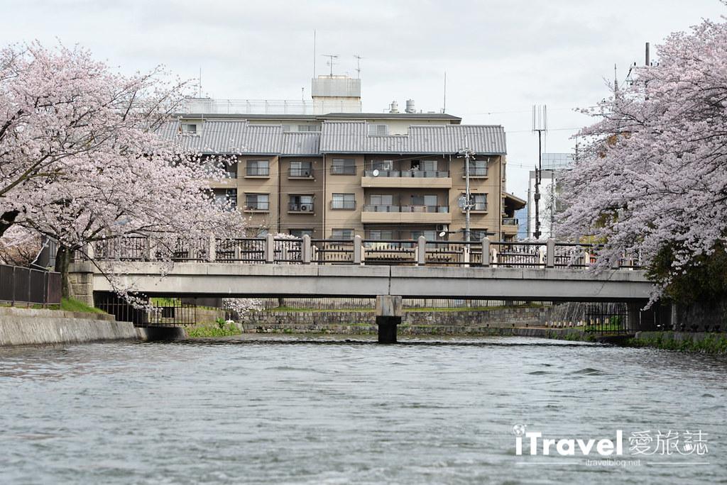 京都賞櫻景點 岡崎疏水道 (25)