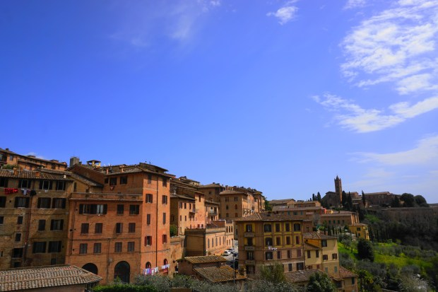 Houses in the historic center of Siena