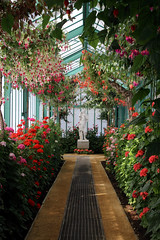 royal greenhouses - copyright travelformotion 9