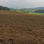 2018_05_16 _Luzernerhinterland_Beat  (154)