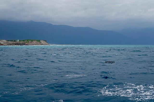 ホエールウォッチング 海 清水断崖の手前?
