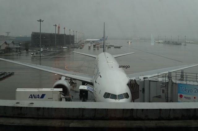飛行機を見ながら