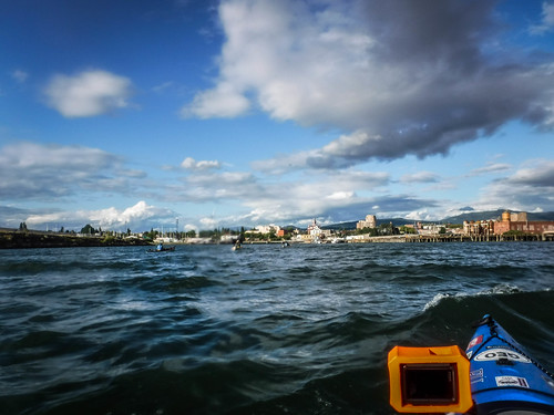 Bellingham Harbor with Moondance Kayaks-51