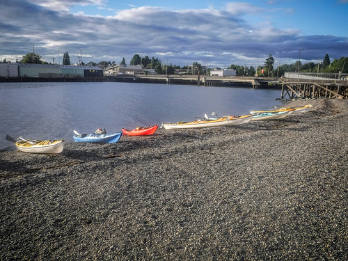 Bellingham Harbor with Moondance Kayaks-67