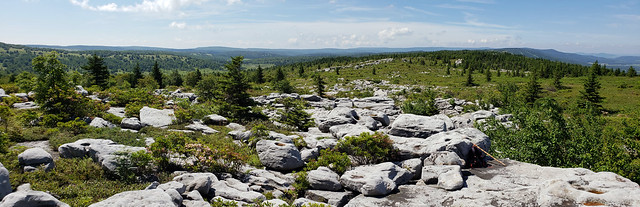 2018-06-30_Dolly_Sods_12
