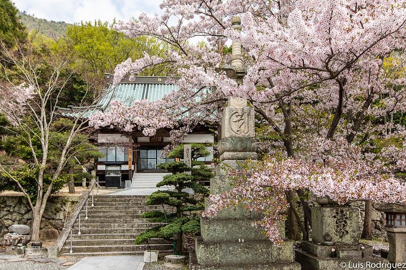 Templo Hoshoin en Shodoshima