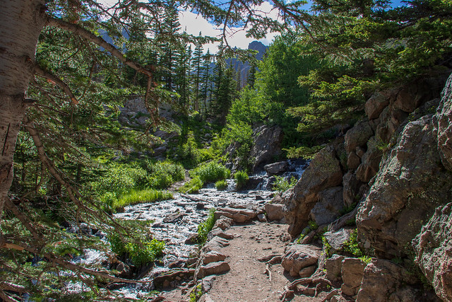 Trail to Emerald Lake