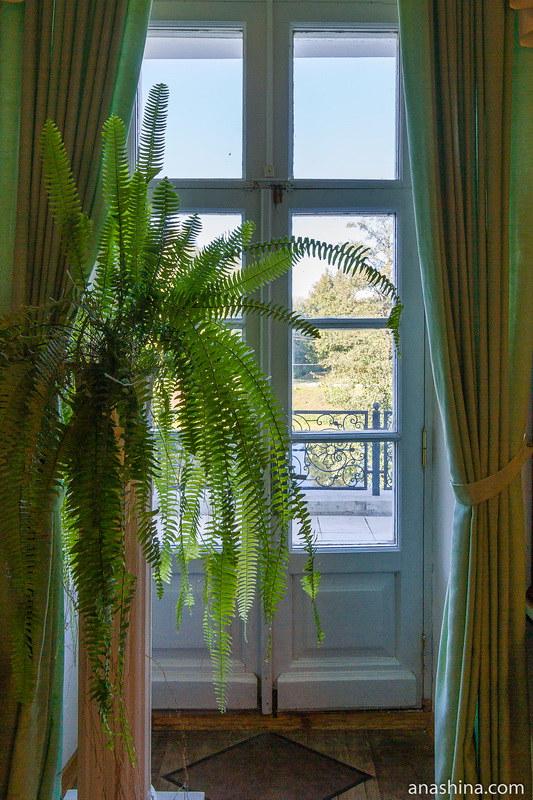 Балконная дверь в сад, усадьба Гончаровых, Полотняный завод