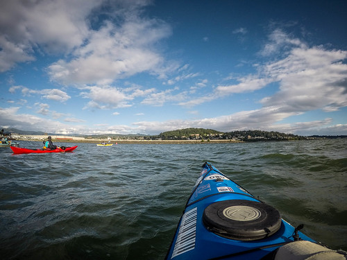 Bellingham Harbor with Moondance Kayaks-10
