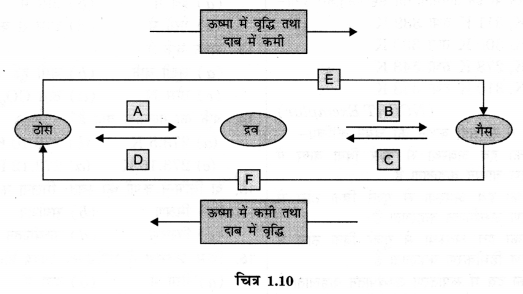 NCERT Solutions for Class 9 Science Chapter 1 (Hindi Medium) 4