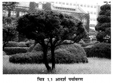 NCERT Solutions for Class 7 Social Science Geography Chapter 1 (Hindi Medium) 3.1
