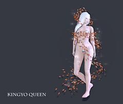 *NAMINOKE*Kingyo Queen