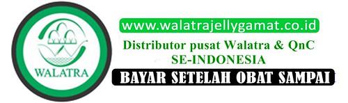 www.walatrajellygamat.co.id