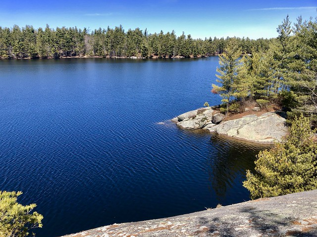 Wolf Lake State Forrest