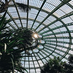 #brussels #today #king #greenhouses #plants #visitbrussel #wanderlust #city #architecture #vsco #vscocam #lookup #belgium #igbelgium #roof #royal #laeken