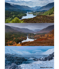 Glen Affric Seasons