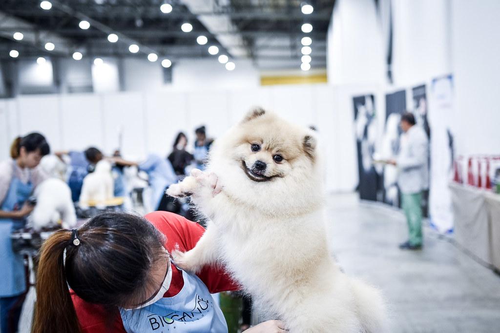Pets Expo 2018-34