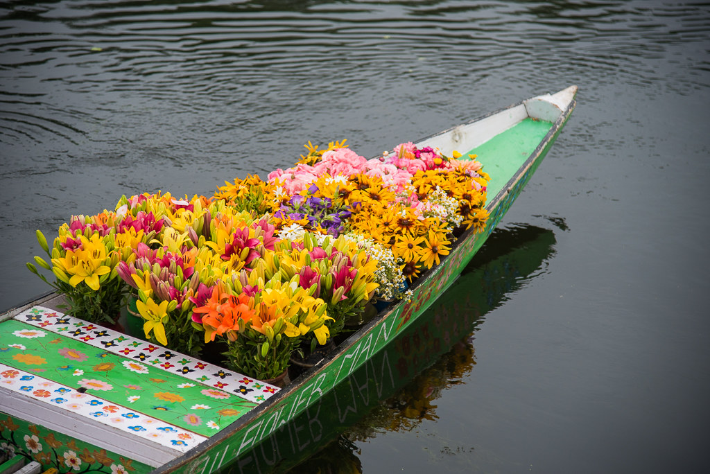 FloatingMarketDalLakeSrinagar_026