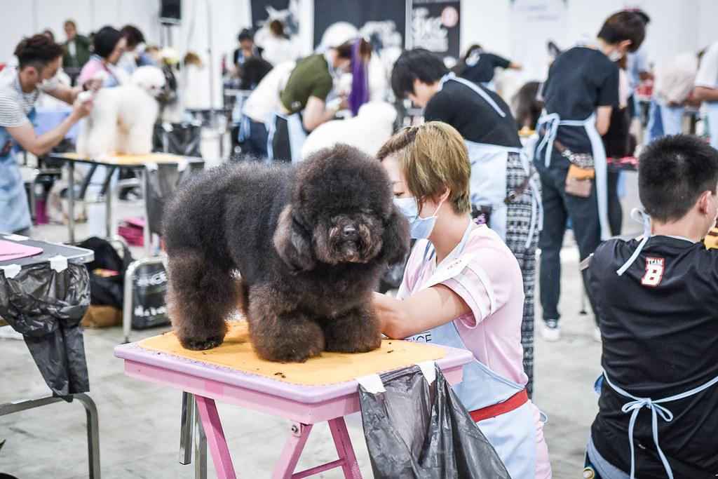 Pets Expo 2018-32