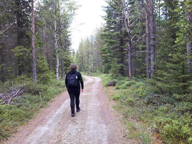 Inlandsbanan Mora-Östersund (8)