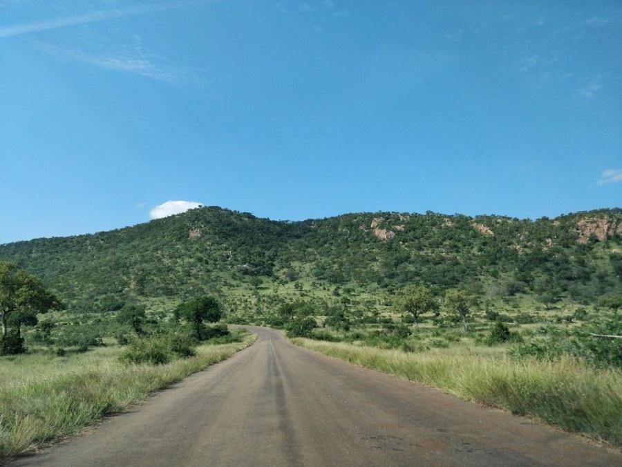 Kruger National Park South Africa Travel Blog