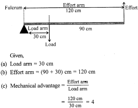 Selina Concise Physics Class 6 ICSE Solutions - Simple Machines 19.1