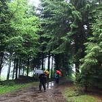2018_05_16 _Luzernerhinterland_Beat  (144)