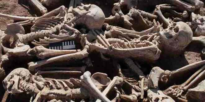 restes_humains_hépatite_2018