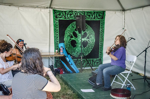 Margaret Driscoll Fiddle Workshop-001