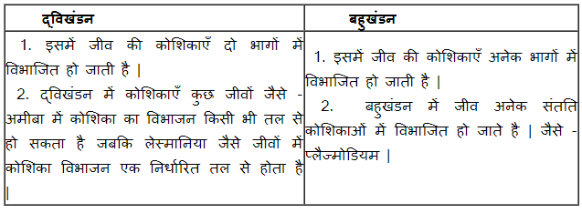 NCERT Solutions for Class 10 Science Chapter 8 How do Organisms Reproduce (Hindi Medium) 1