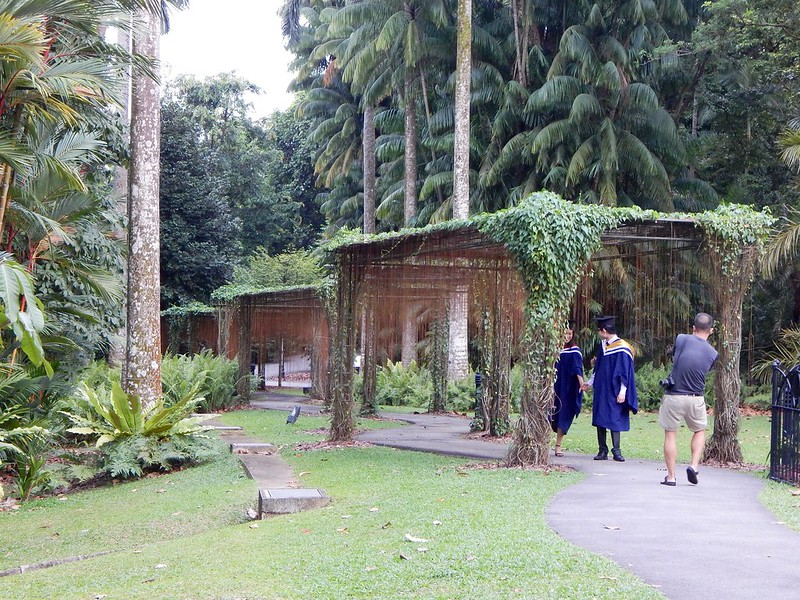 City Girl City Stories: Singapore Botanic Gardens