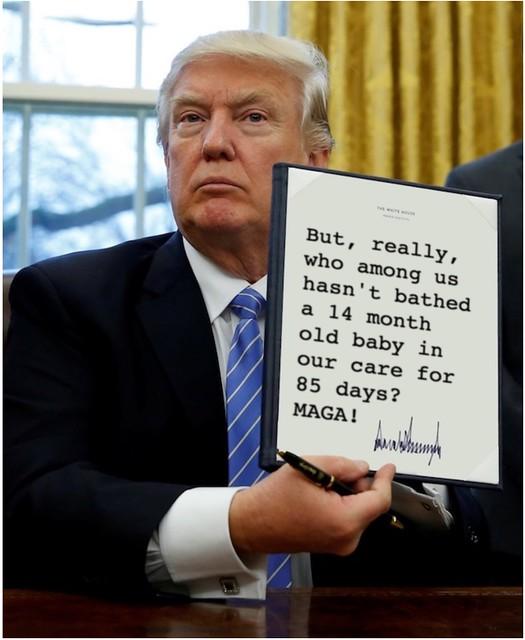 Trump_85days