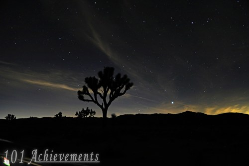 Stargazing at Joshua Tree