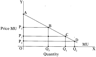 CA Foundation Business Economics Study Material Chapter 2 Theory of Demand and Supply - MCQs 355