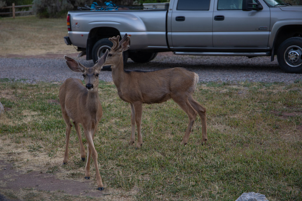 07.05. Rifle Falls State Park