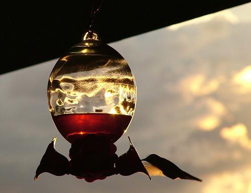Hummingbird Glow by Paula High-Young -KE5DDZ