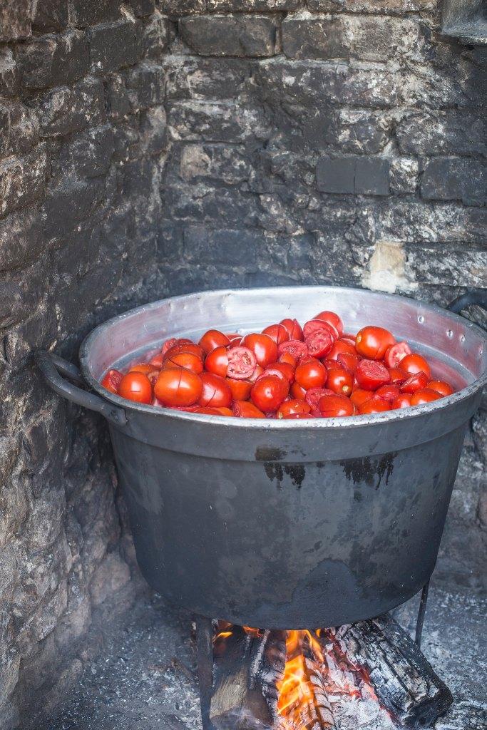 Pomodori4